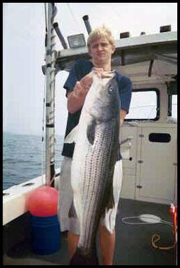 Fishing maine new hampshire massachusetts for Bass fishing nh
