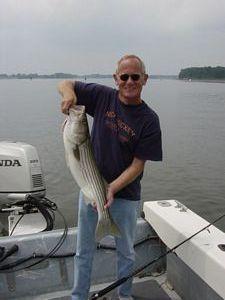 striped bass fishing New England